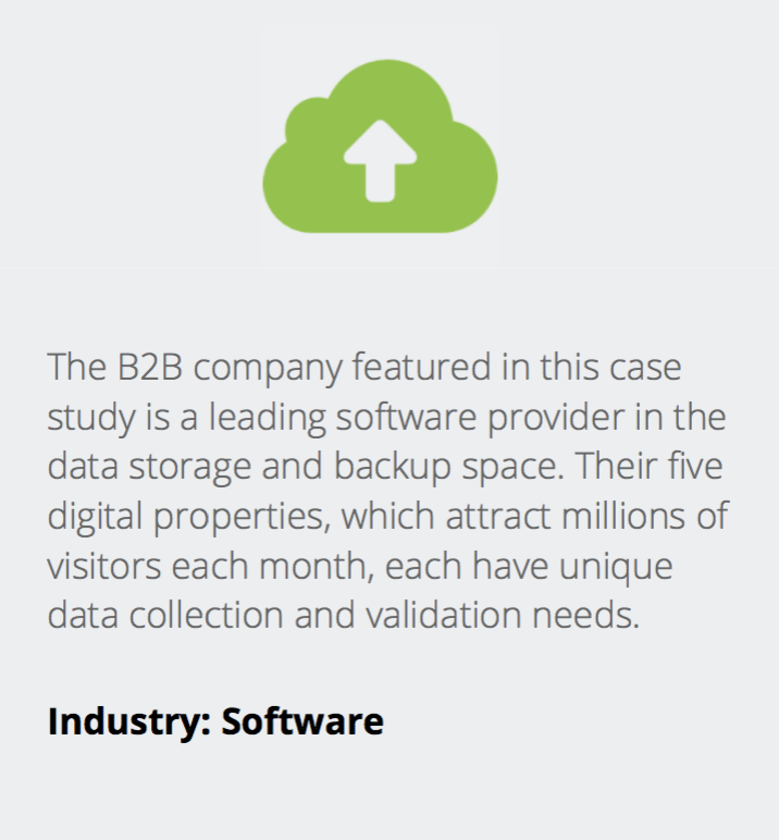 B2B Data Validation and Monitoring Case Study